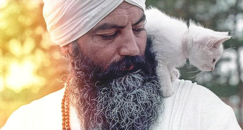 Yogi Bhajan interacting with white cat sitting on his shoulder